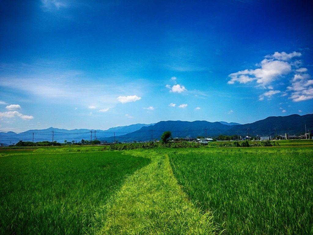 青空と未来への道
